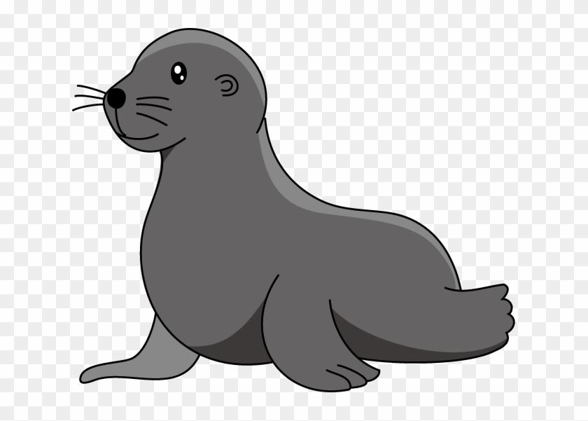 Sea Lion Clipart - Sea Lion Clipart #810755