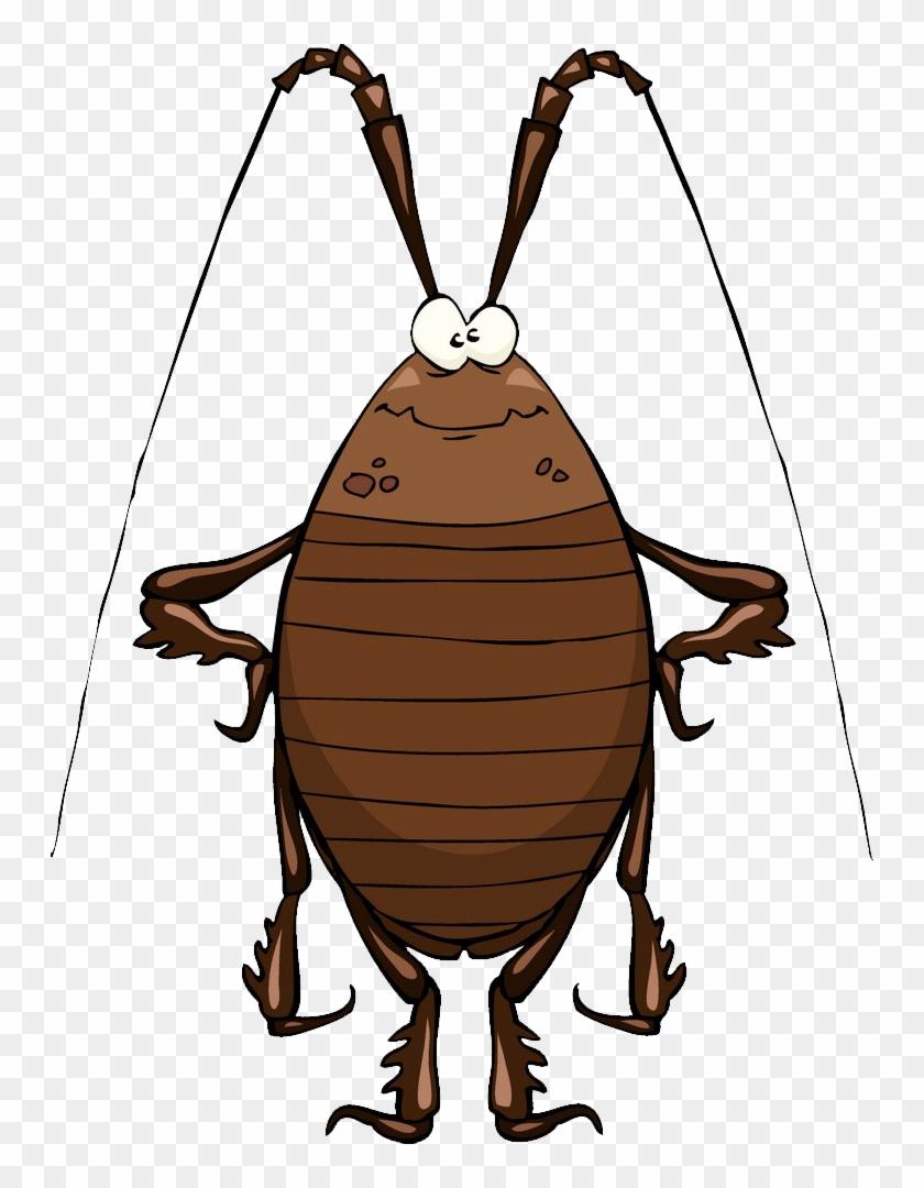 Cockroach Cartoon Stock Illustration Clip Art Cockroach - Funny Cockroach #813662