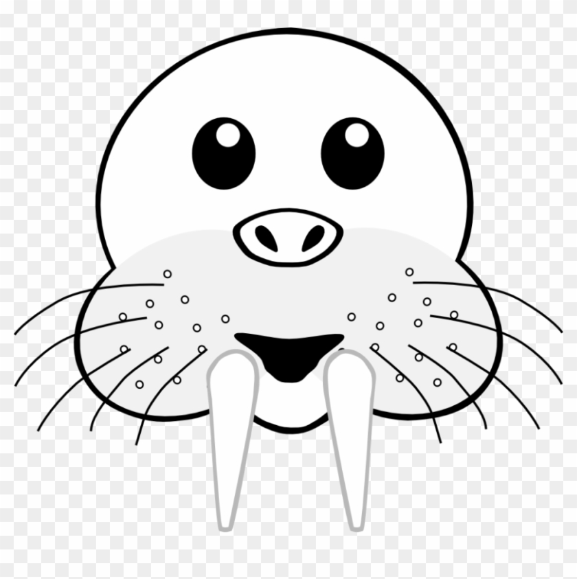 Walrus Clipart Outline - Face Of Animal Clipart Black And White #149210