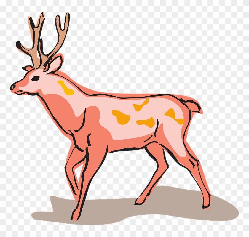 Red Deer Style Wild Animal Unusual - Red Deer Easy Drawing #149768