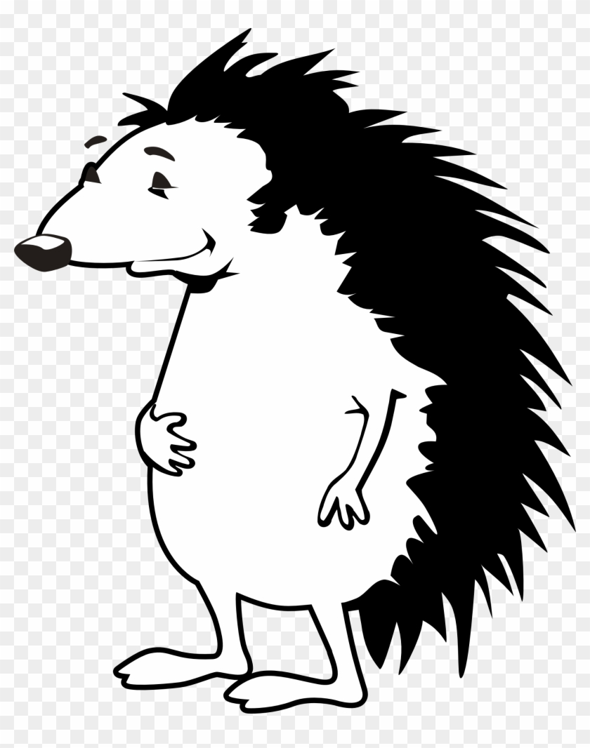 Porcupine Coloring Book Crokky Coloring Pages - Hedgehog Black And ...