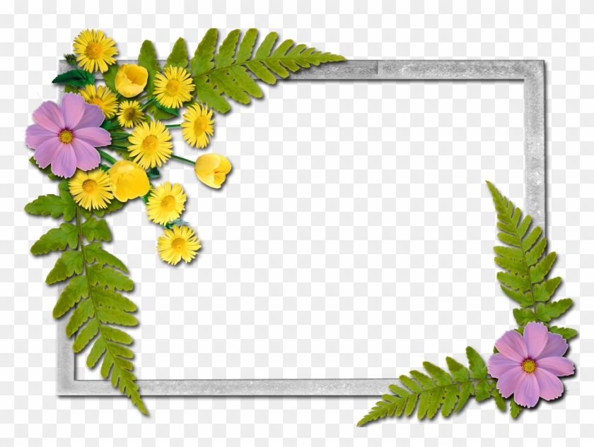 Writing Paper - Flowers Frames #150435