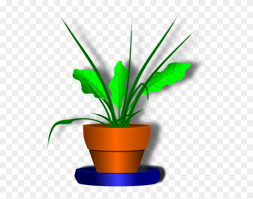 Potted Plant Clip Art Png Bunga Dan Pot Animasi Free