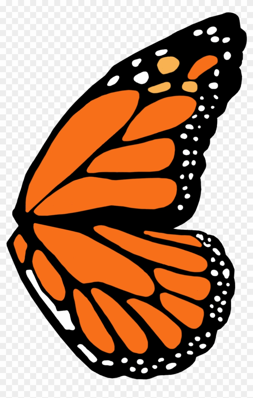 full left monarch butterfly wing template - brush-footed butterflies