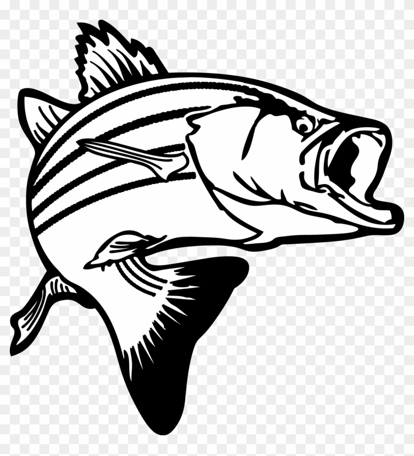 Jumping Bass Fish Clip Art Fish Clipart Black And White Free Transparent Png Clipart Images Download