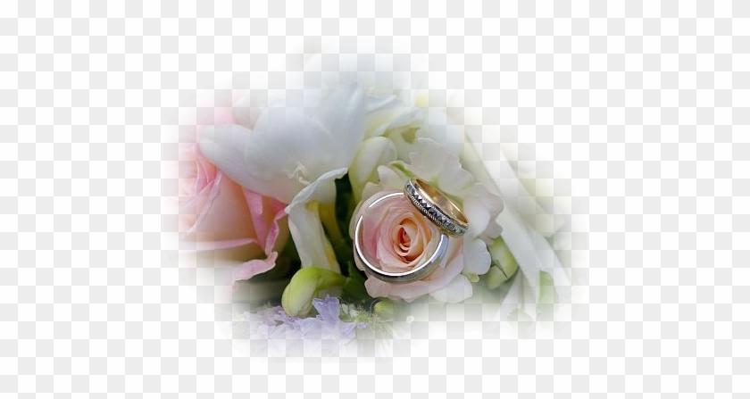 Mariage Alliances Et Fleurs Mariage Free Transparent Png Clipart