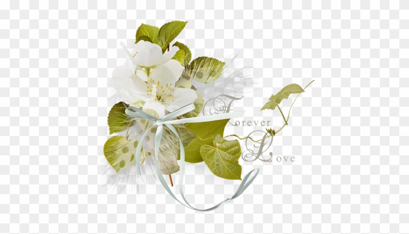 Fleur Mariage Japanese Honeysuckle Free Transparent Png Clipart