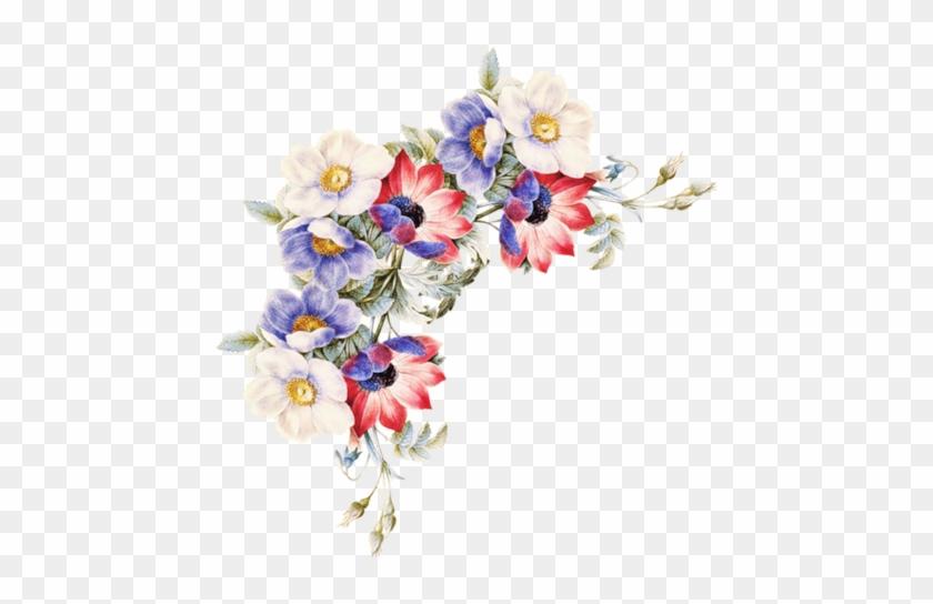 Cantos De Flores Do Vintage Em Png Women Of Flowers Book Free