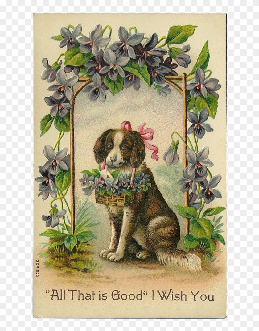 Vintage Embossed 1911 German Postcard Of Dog With Flowers - Antique Valentines Day Cards #823524