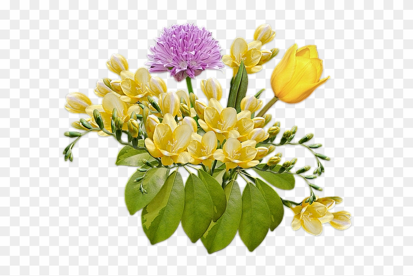Flowers, Bouquet, Posy, Freesia, Tulip, Composition - Wildflowers ...