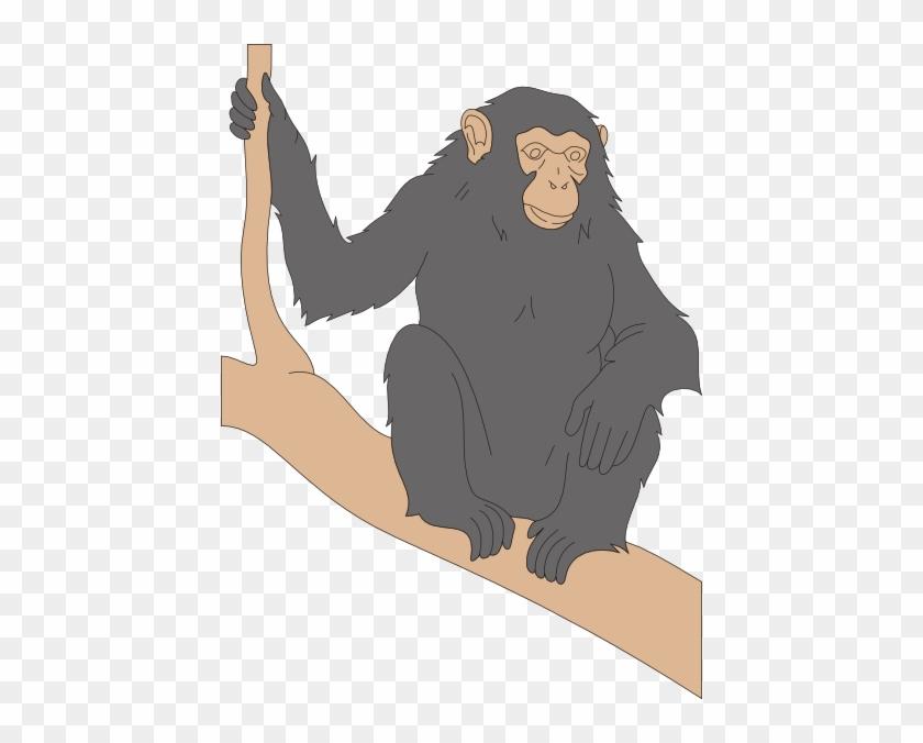 Chimp Sitting On A Branch Clip Art - Cute Chimps With Black Fur #824291