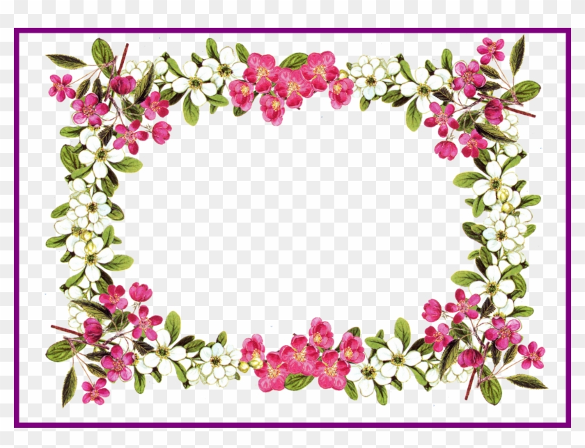 Best Printable Clip Art Digital Flower Frame Png And - Flower Border ...