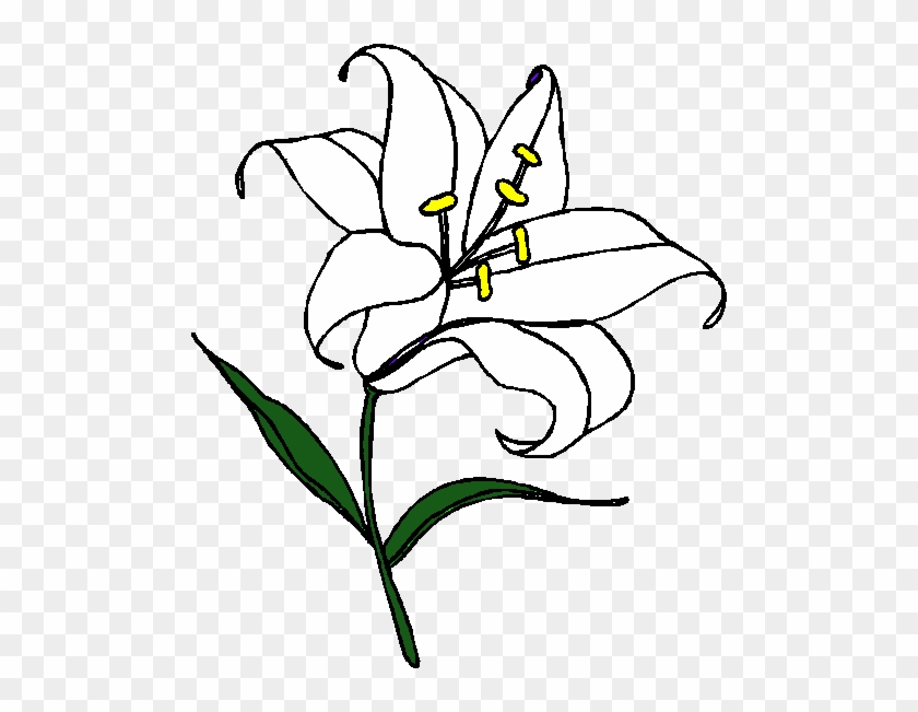 Easter Lily Clipart Free - Tiger Lily Coloring Pages - Free ...