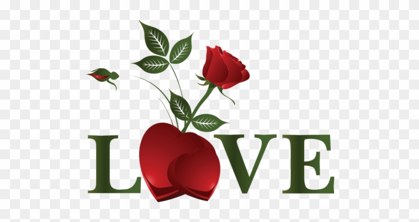 Heart Rose Love Is The Beauty Of The Soul Free Transparent Png