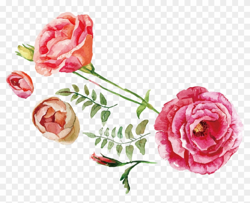 Rose Flower Bouquet Illustration - Watercolor Flowers Vector Free Download #826090