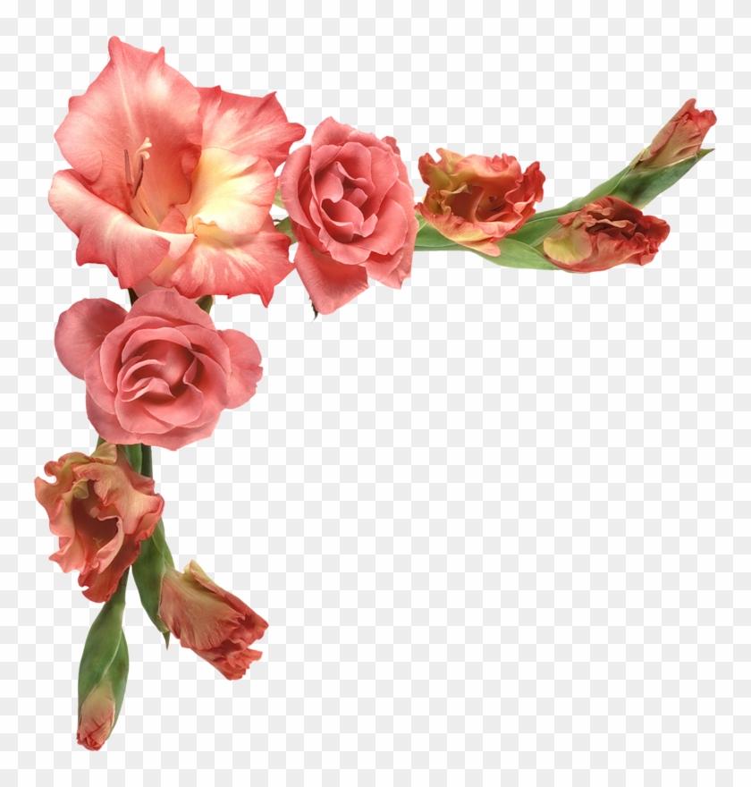Цветы На Прозрачном Фоне Клипарт #826749