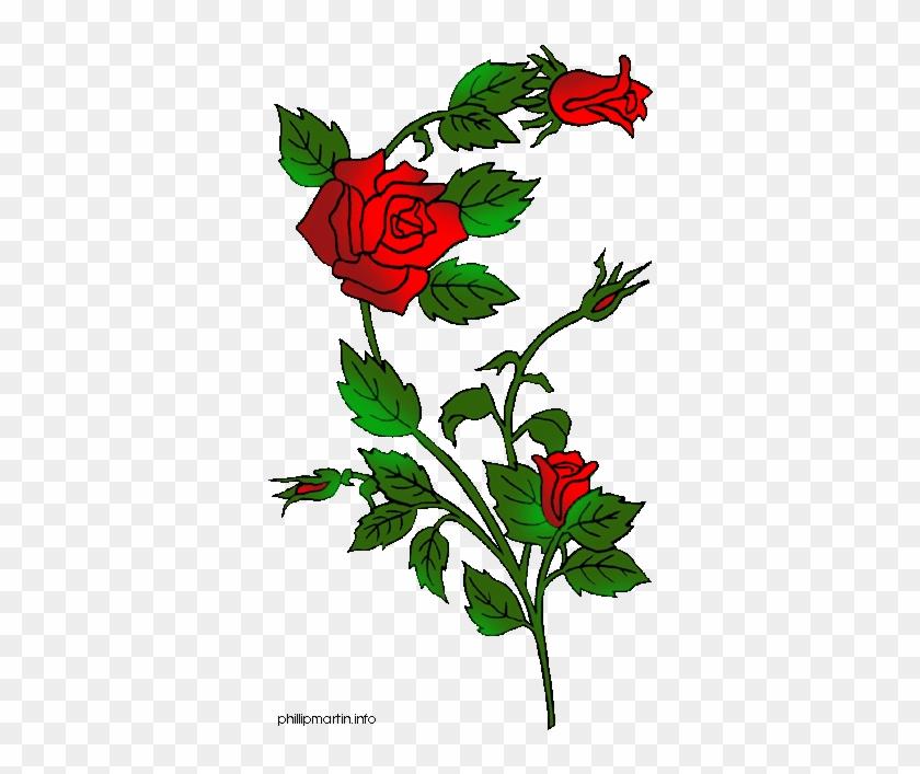 Vine Clipart Rose Thorns - Rose Clip Art Gif #826931