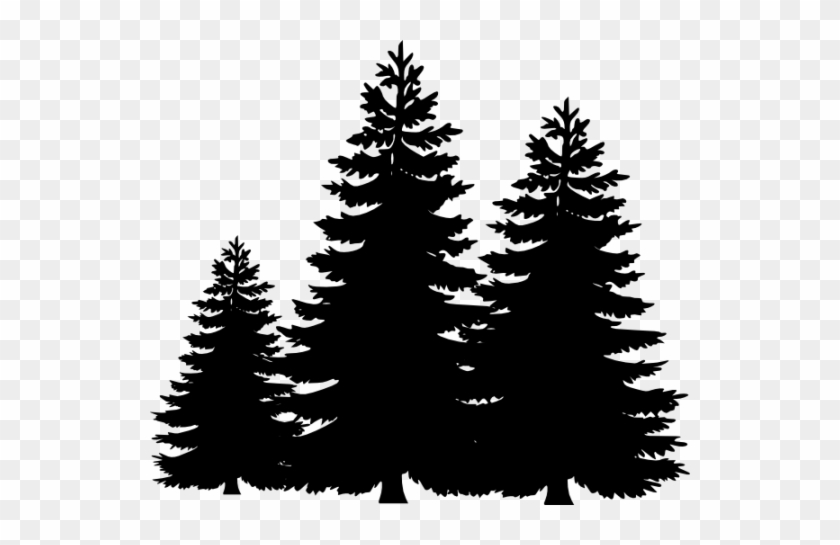 evergreen tree clipart black and white pine trees free