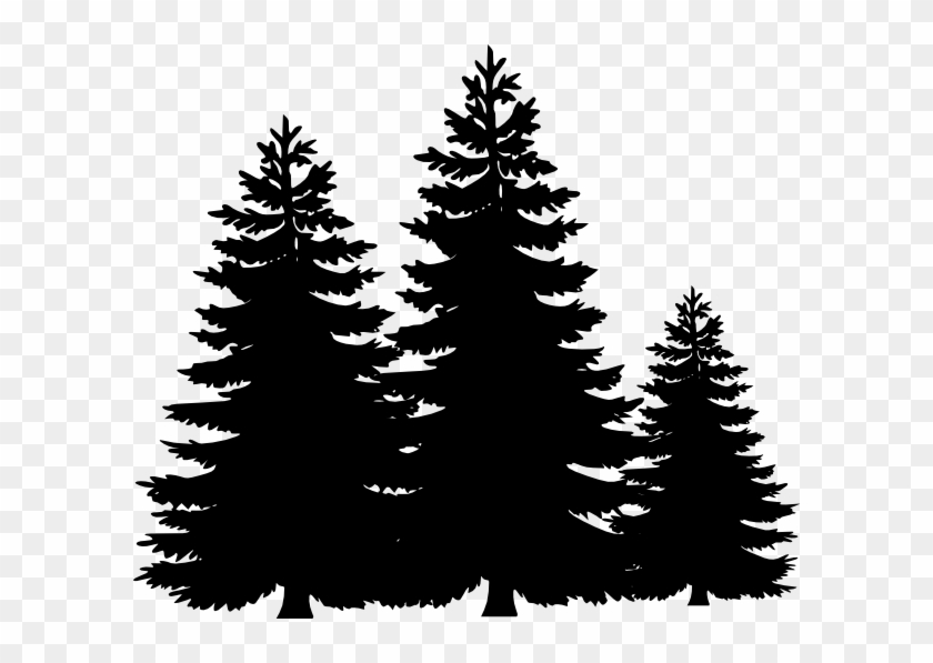 Evergreen Tree Clipart Pine Tree Clipart Black And White Free