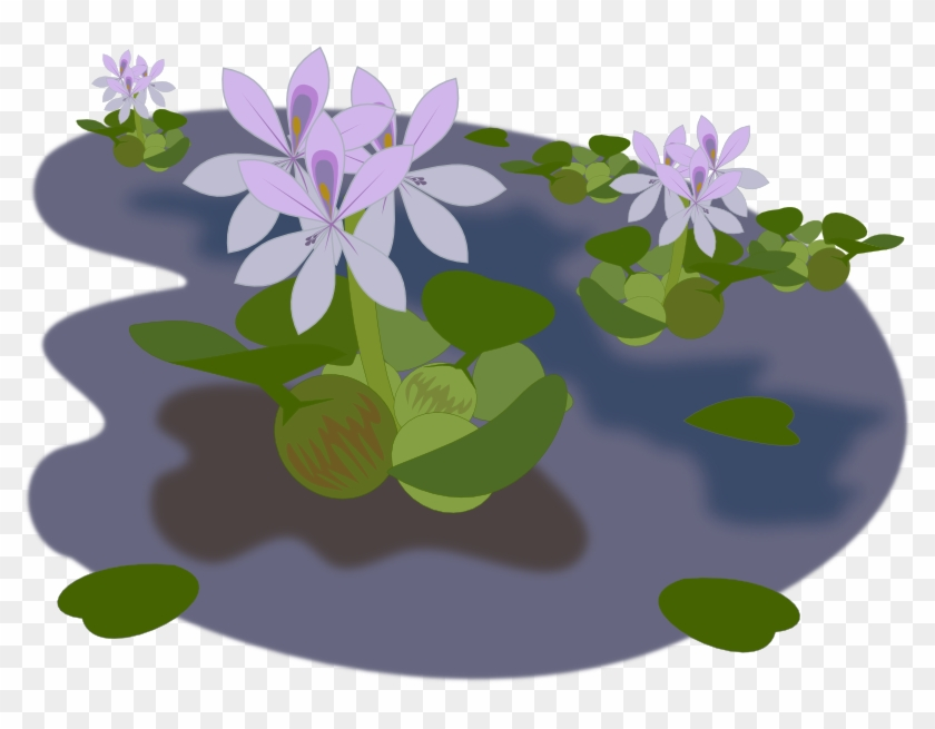 Pond Clipart Transparent - Free Water Plant Pngs #829507