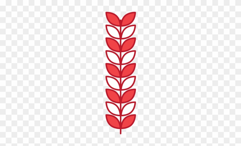 Branch Laurel Leaves Decoration Natural - Bay Laurel #837175