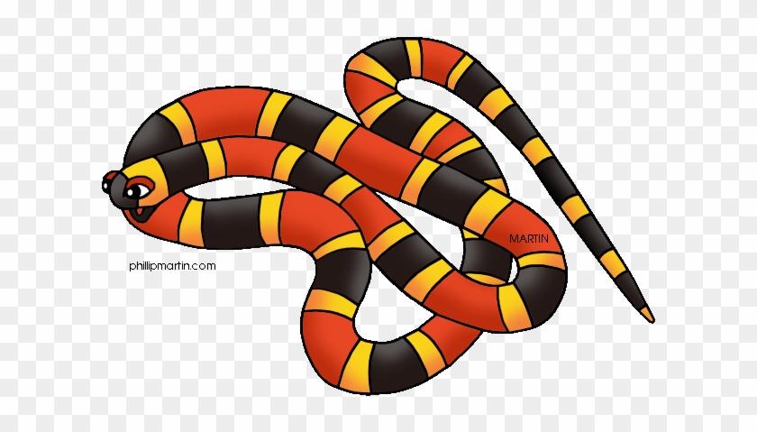 Toucan Clipart Rainforest Snake - Rainforest Animals Clipart #841685