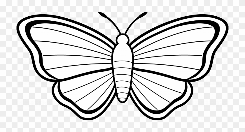 Butterfly Outline Clipart Images Simple Printable Animal - Colouring Images  Of Butterfly - Free Transparent PNG Clipart Images Download