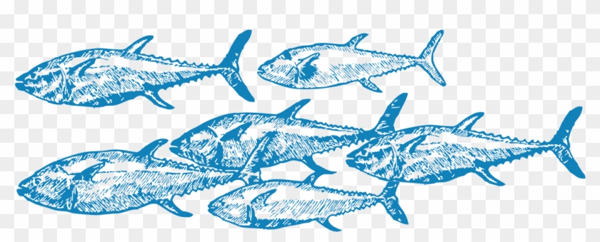 Challenges For Overfishing Include Monitoring Fishing - School Of Fish Drawing #844362