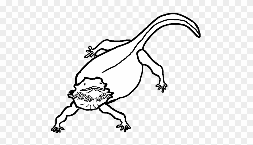 Pin Dragon Clipart Black And White - Bearded Dragon Head Drawing #845243