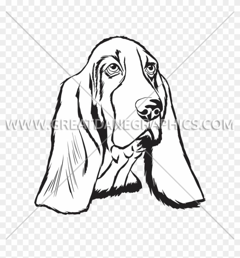 Basset Hound Face Black And White #848192