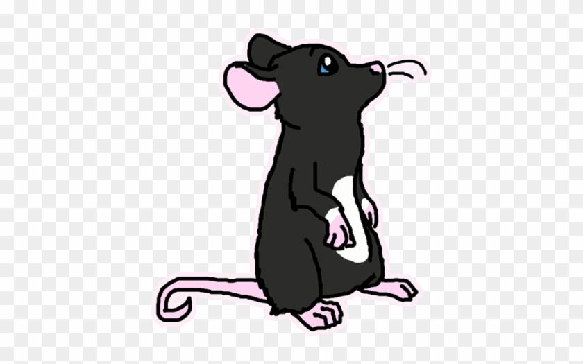 Уточками, картинки анимашки крыса