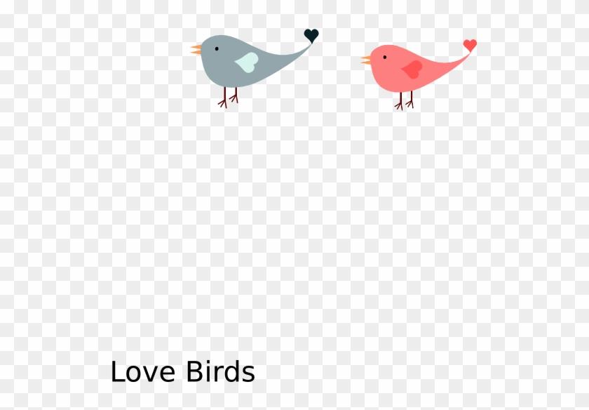 Love Bird Clip Art At Clker Com Vector Online Royalty - Clip Art #852328