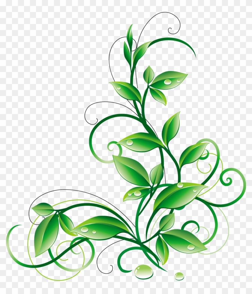 Leaf Flower Clip Art - Green Corner Border Png #853362