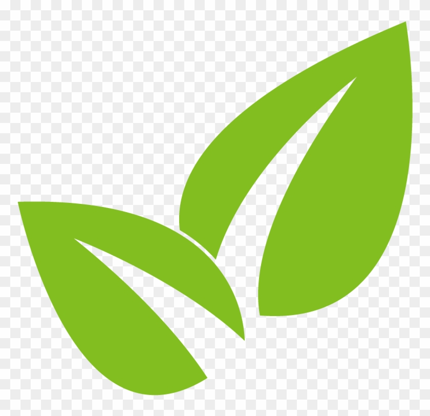 Plant Leaves - Root #853857