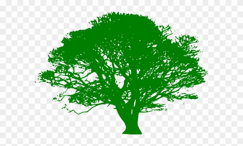 Green Tree Clip Art At Clker - Oak Tree Clip Art Black And White #853873