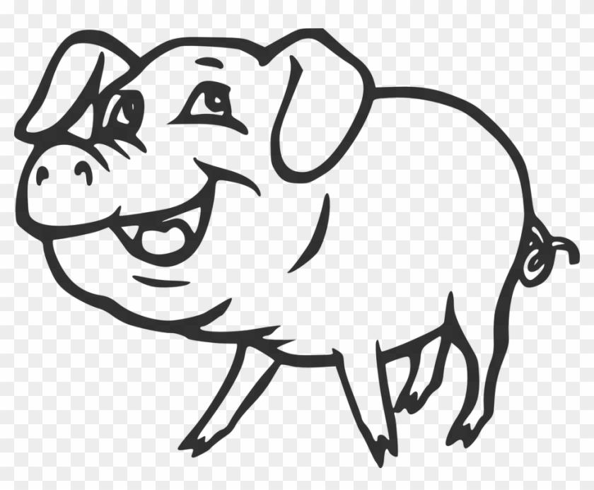 Farm Pig Smiling Animal Tail Pork Curly Smile - Pig Black And White #159821