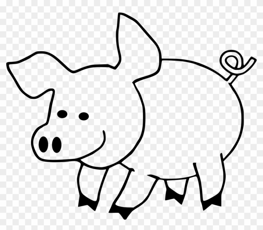 Cartoon Hog Pig Swine - Cute Pig Coloring Pages #159877