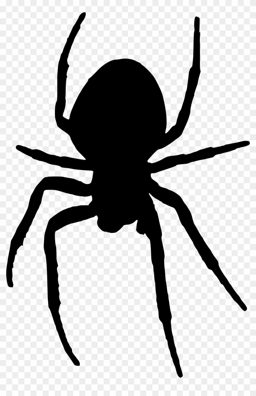 Spider - Spider Silhouette Png #160614