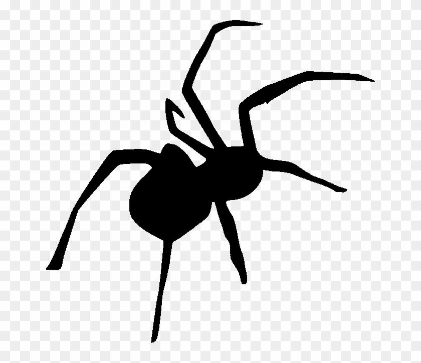 spider stencil - Isken kaptanband co