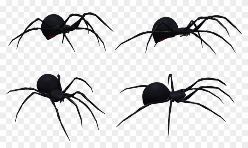 Black Widow Spider Set 03 By Free Stock By Wayne On - Black Widow Spider Profile #160895
