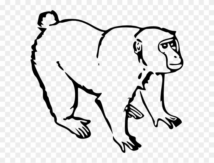 Spider Monkey Clip Art