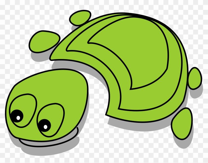 Tortoise - Tortoise Cartoon #162647
