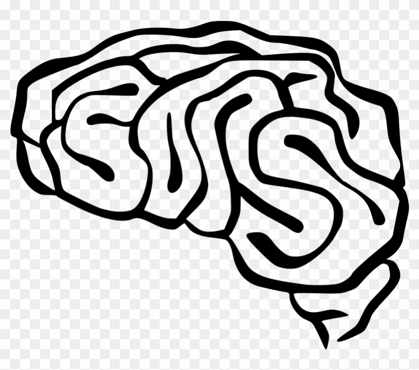 brain clip art free vector brain clip art free transparent png
