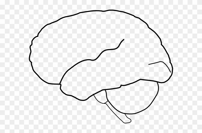 Brain Template Brain Outline Clip Art At Clker Vector - Outline Of The Human Brain #163689