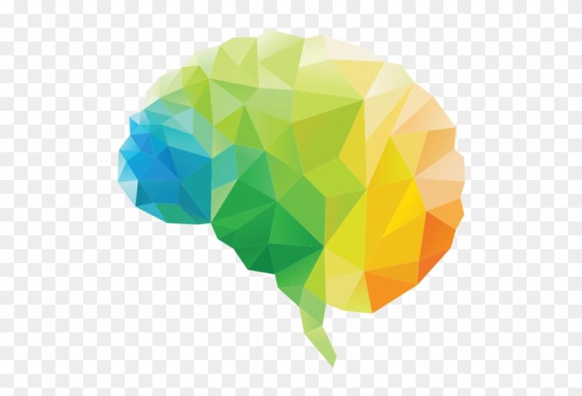 Balance Your Heart Brain And Gut 3 Brains Health