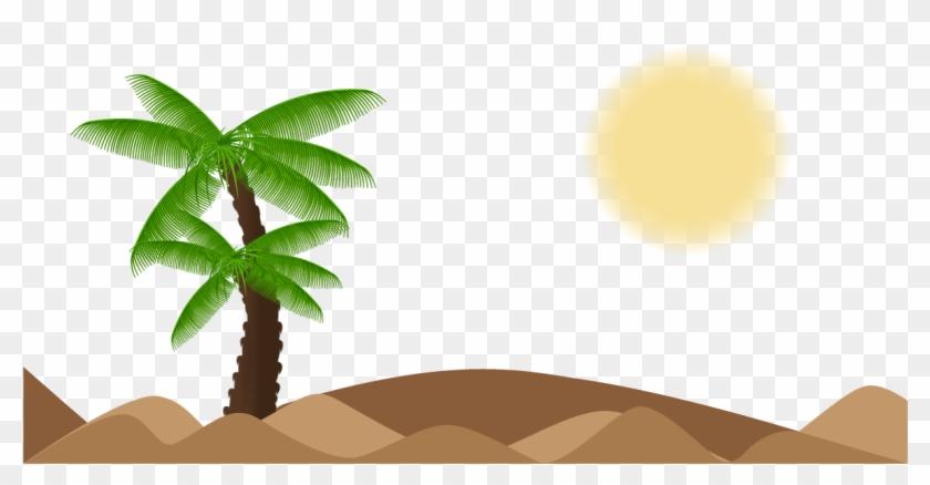 Tree Arecaceae Landscape Euclidean Vector - Palm Trees #862539