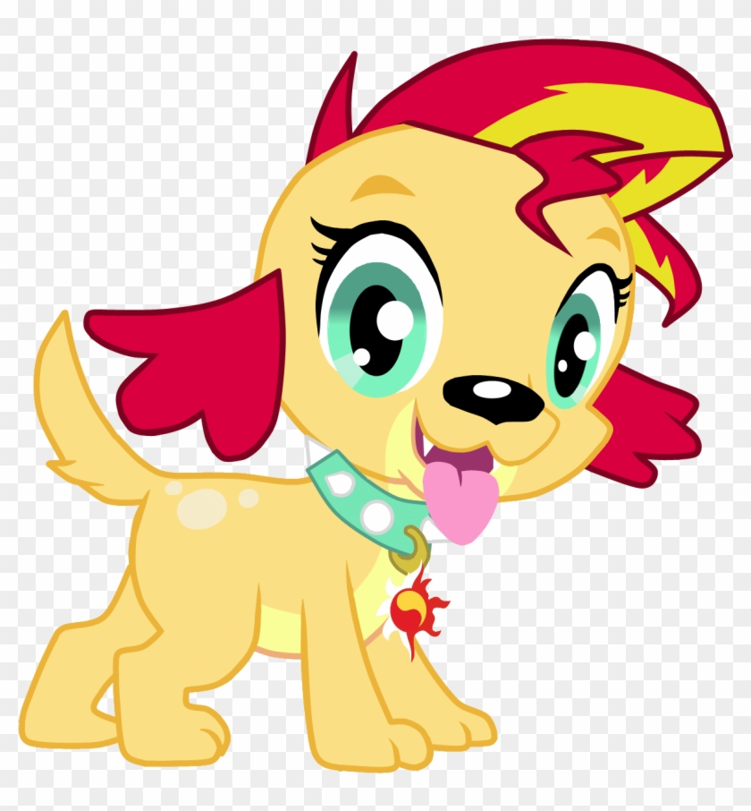 Sunset Shimmer Rainbow Dash Twilight Sparkle Pony Dog My Little