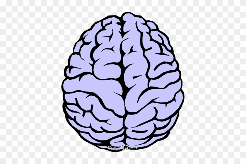 human brain clipart simple drawing of a brain free transparent png clipart images download human brain clipart simple drawing of