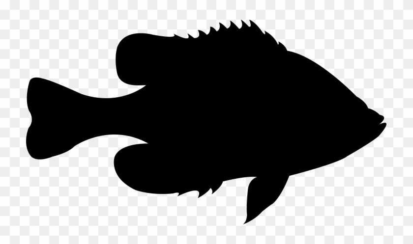 Click Here To See What We Offer - Hank's Live Bait & Tackle #874168