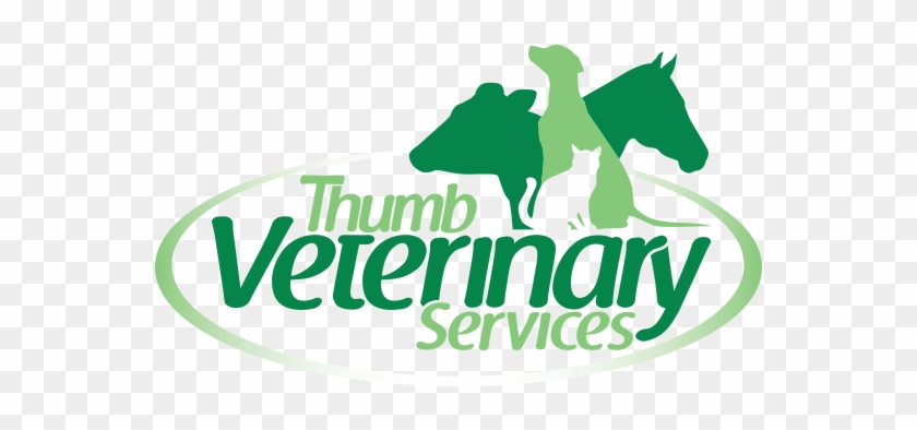 Veterinary Services Logo #875441